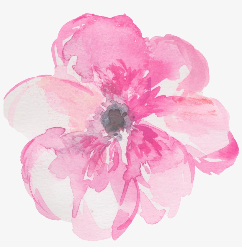 Watercolour Flowers Watercolor Painting Clip Art Pink Watercolour