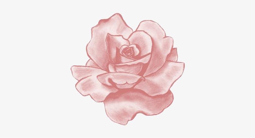 Pink Flower Clipart Flower Tumblr Sticker Rose Transparent Png
