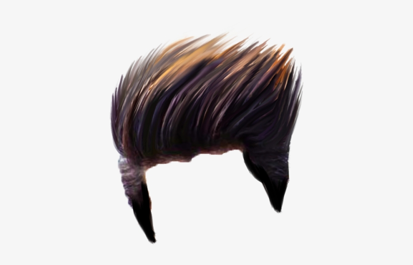 Hair Png Photo Hair Style Png Picsart Transparent Png 900x1600