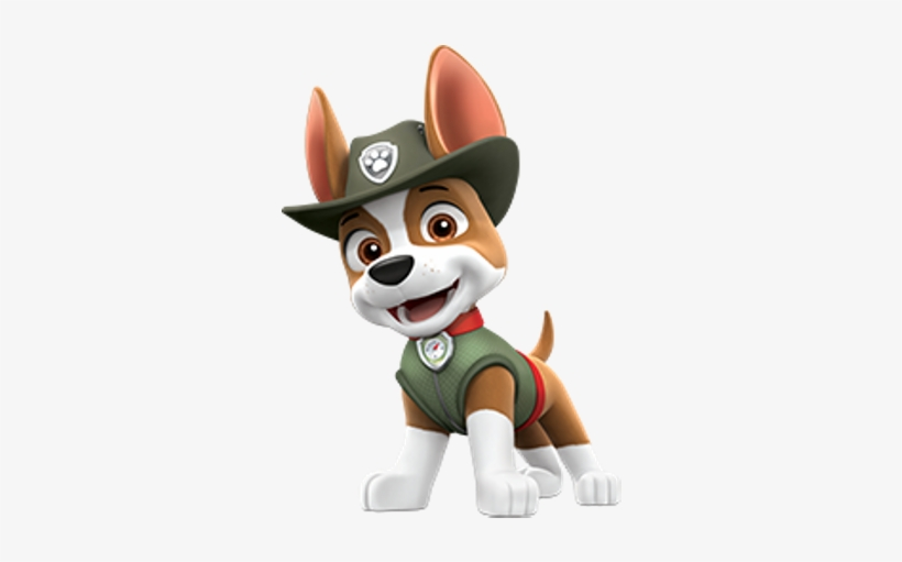 tracker clear  paw patrol everest and tracker transparent