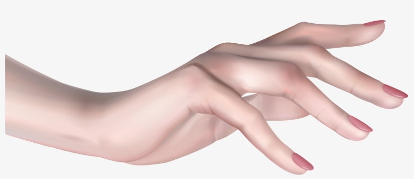 Female Hand Png Transparent Png 8000x3427 Free Download On Nicepng Free for commercial and personal projects. female hand png transparent png