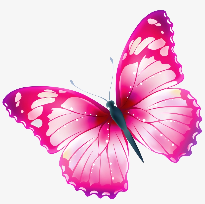 Butterflies, Butterfly, Cartoon, Comic, Cute, Drawing - Cartoon Butterfly  Clipart, HD Png Download - kindpng