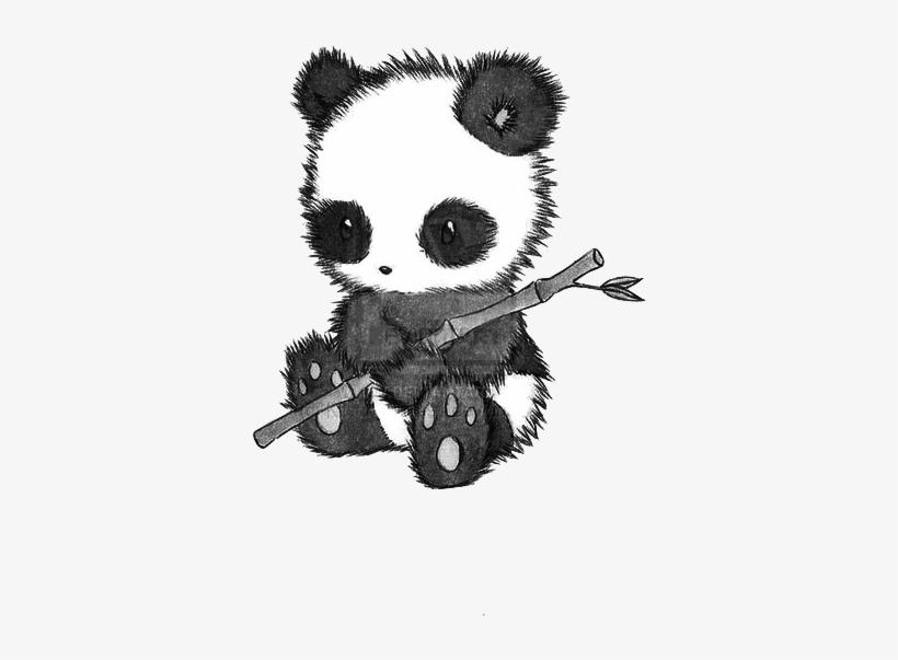 Fuzzy Cuddly Panda Drawing Oso Panda Dibujo A Lapiz Transparent