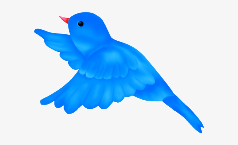 Bird Clipart Png Blue Bird Flying Clipart Transparent Png 600x600 Free Download On Nicepng