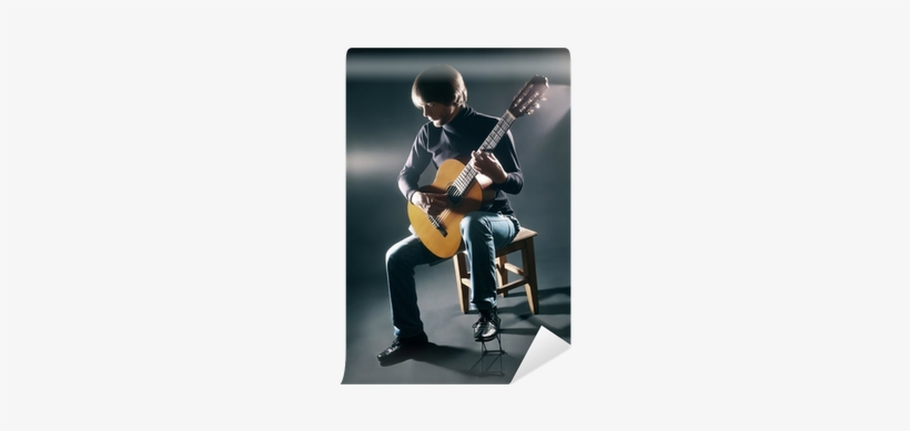 Acoustic Guitar Guitarist Player Wall Mural Pixers Guitar