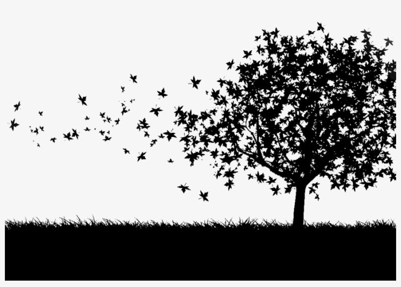 Bgarvore Trees Wallpaper Hd Black And
