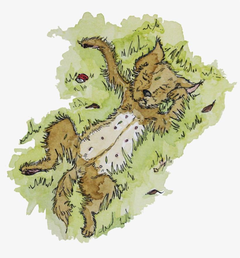 Perro Pasto Libro Perros Patipari Perros De Pánico Illustration