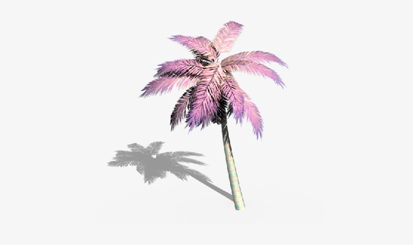 Palmera Palmeras Aesthetic Vaporwave Grunge Tumblr Overlay Transparent Palm Transparent Png 479x407 Free Download On Nicepng