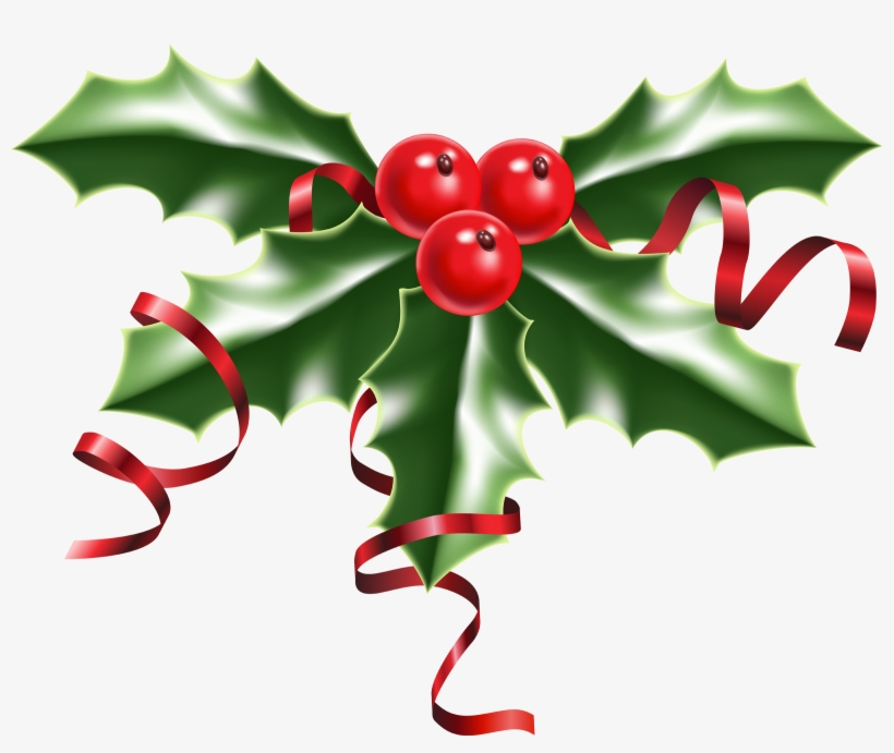 Christmas Holly Png.Christmas Holly Pictures 1 2 Holly With Berries