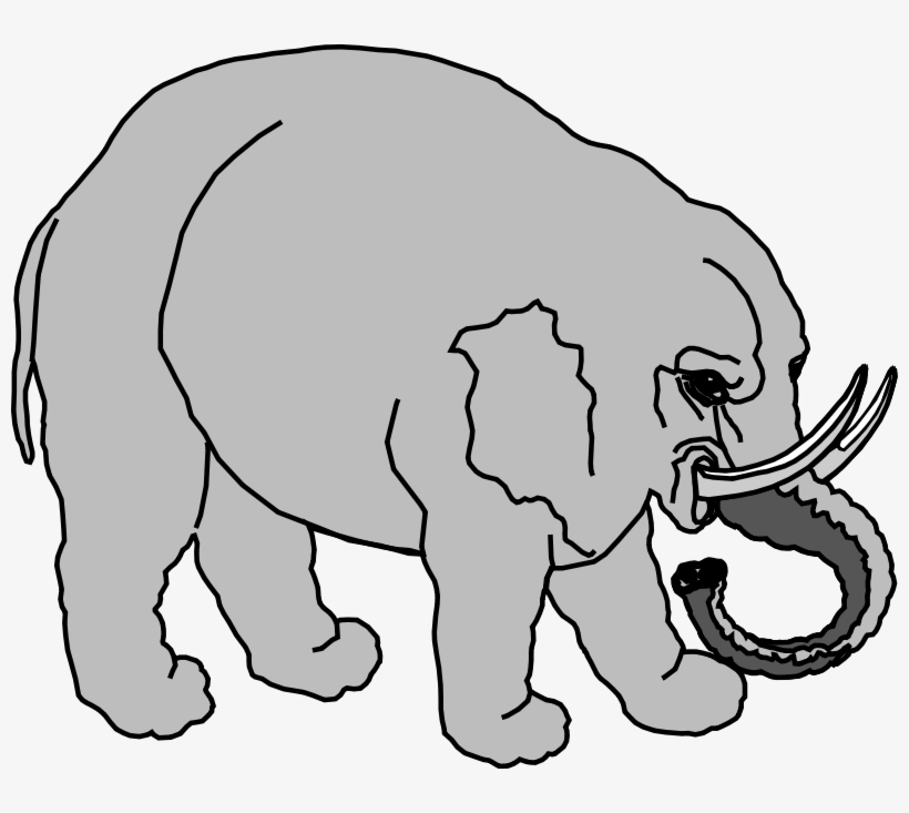 Elephants Line Art Download Black And White Circus Animasi Gajah