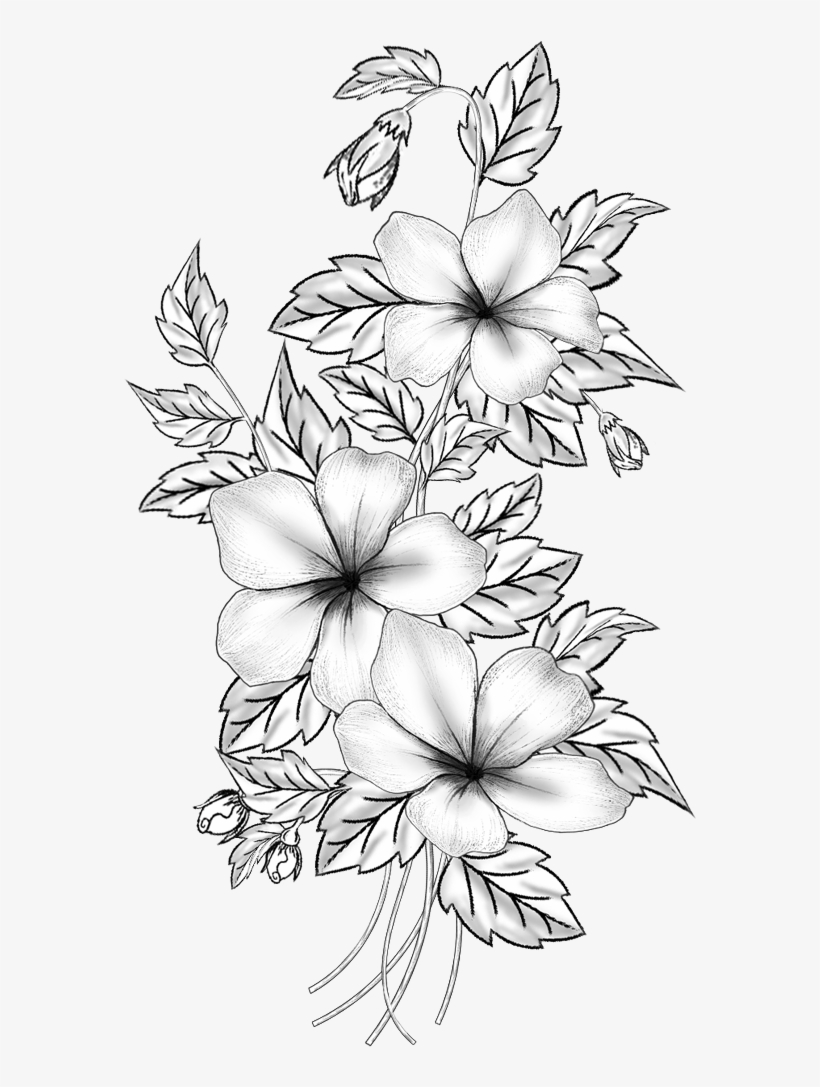 Floral design cut flowers drawing branch m 02csf flower pencil sketches png