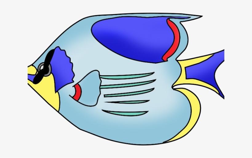 Tropical Fish Clipart Fush Colored Fish Drawing Transparent Png