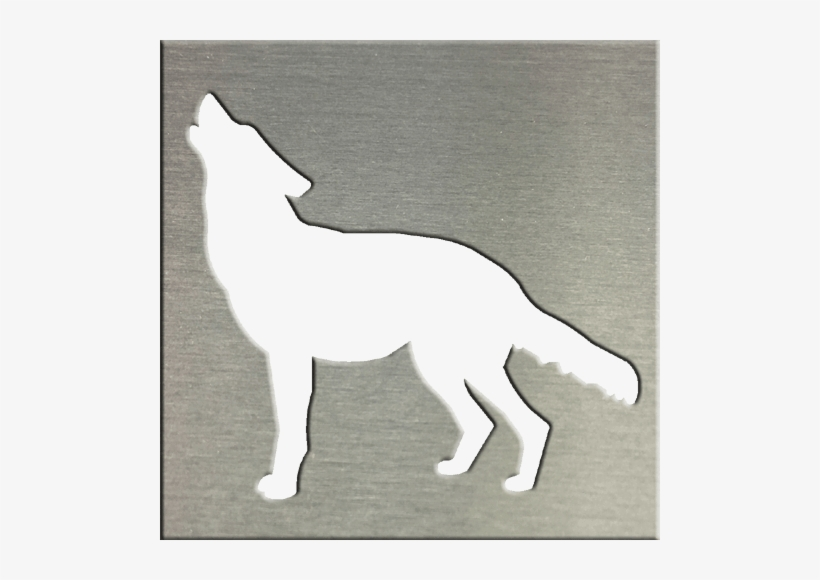 Coyote - Wolf Transparent PNG - 500x500 - Free Download on