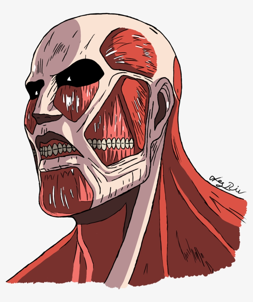 Attack On Titan Transparent Images Attack On Titan Colossal Titan Png Transparent Png 850x940 Free Download On Nicepng