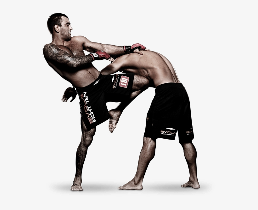 Mixed Martial Arts Fight Png Pic Mix Martial Arts Png Transparent Png 600x600 Free Download On Nicepng