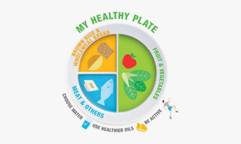 My Healthy Plate To Replace Food Pyramid In Singapore My Healthy Plate Health Promotion Board Transparent Png 395x410 Free Download On Nicepng