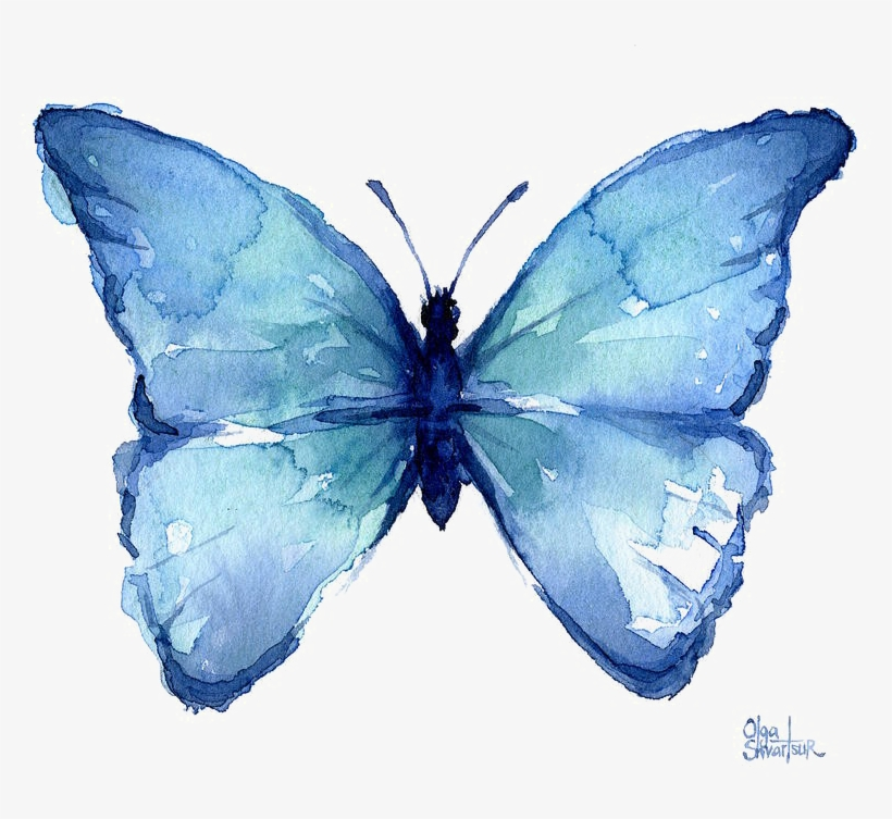 Blue Butterfly Png Free Download - Blue Butterflies Watercolor Art