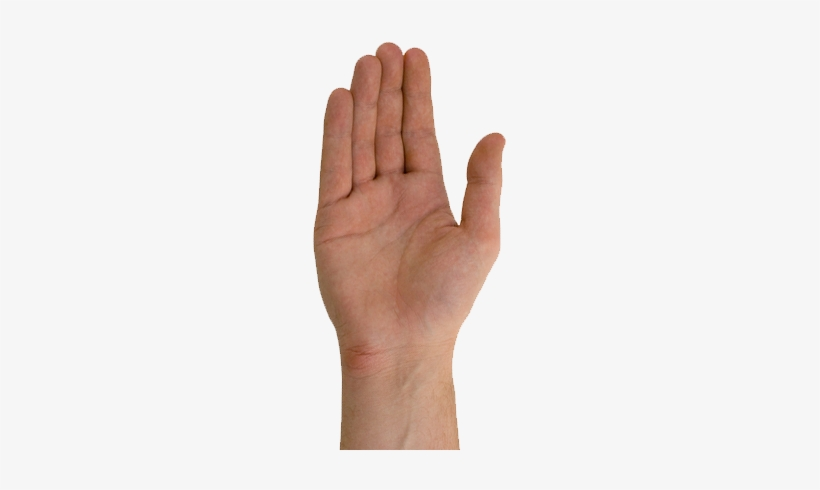 Two Hands Reaching Out Transparent Png 288x441 Free Download On Nicepng Hand reaching out png collections download alot of images for hand reaching out download free with high quality for designers. two hands reaching out transparent png