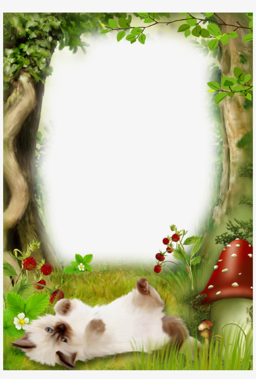 green forest nature picture frame with cute kitten picture frame transparent png 839x1200 free download on nicepng green forest nature picture frame with
