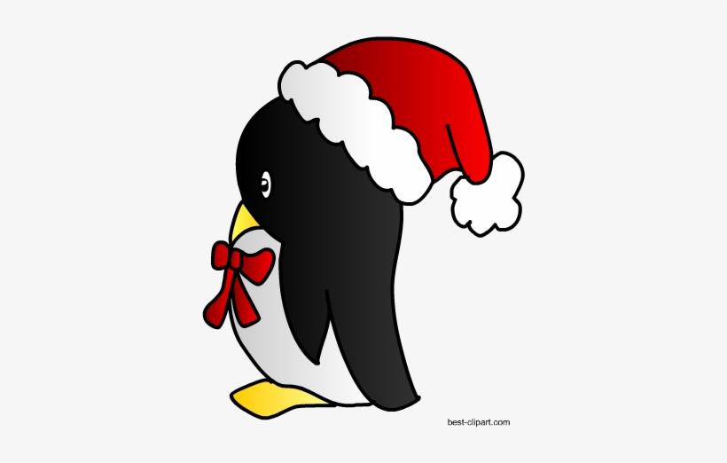 Christmas Hat Clipart Transparent Background.Penguin In Christmas Hat Clip Art Christmas Day