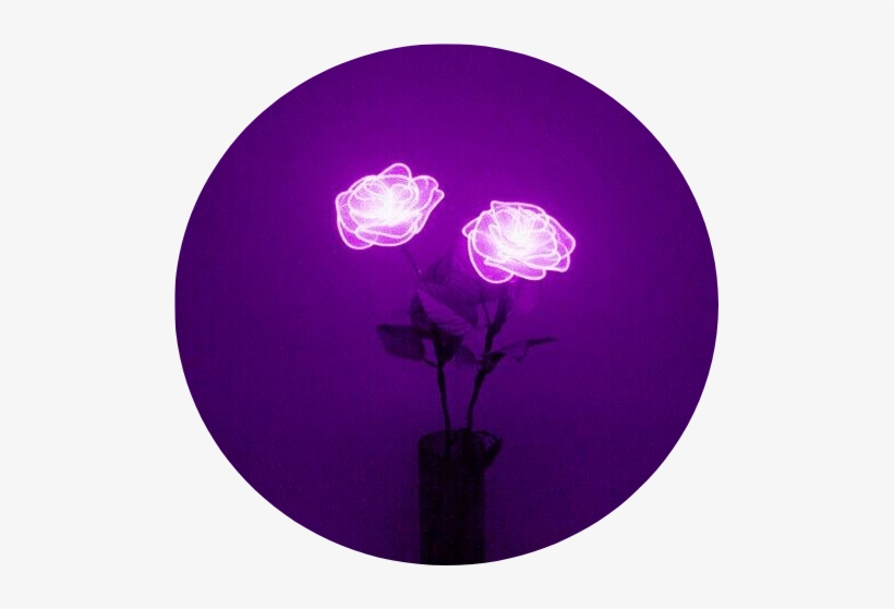 Aesthetic Lavender Background Tumblr Light Pretty Png Purple