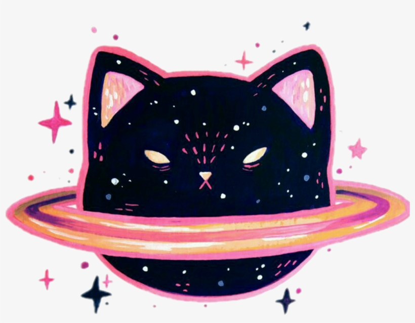 Space Galaxy Cat Kitty Cute Hipster Pink Black Tumblr Galaxy