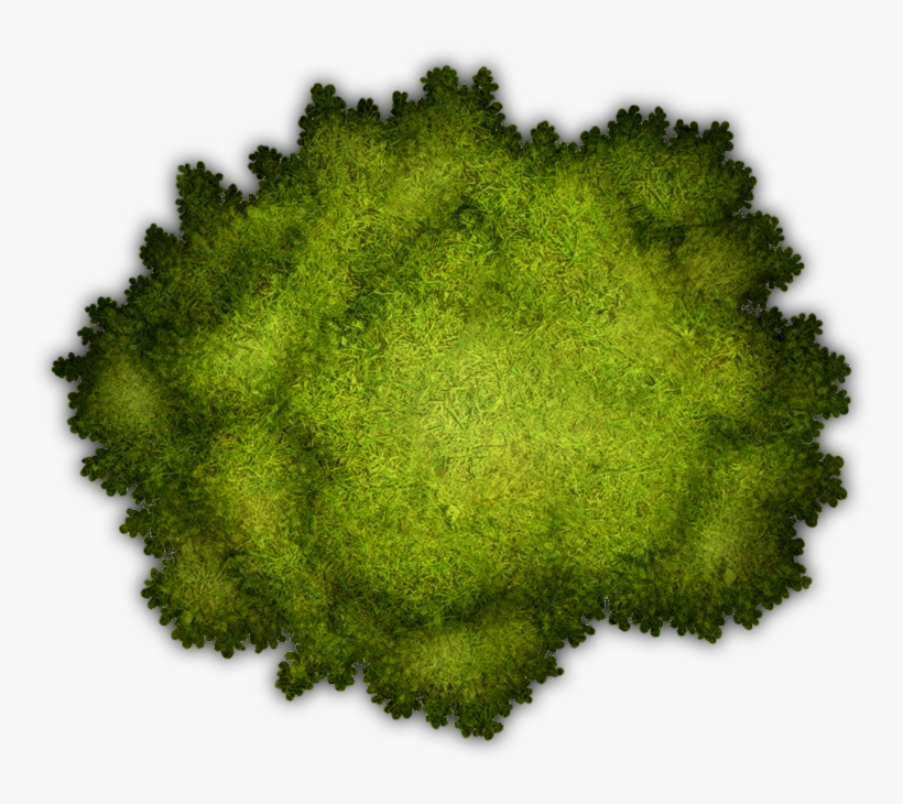 Map Marker, Broccoli, Tabletop Rpg, Game Assets, Character
