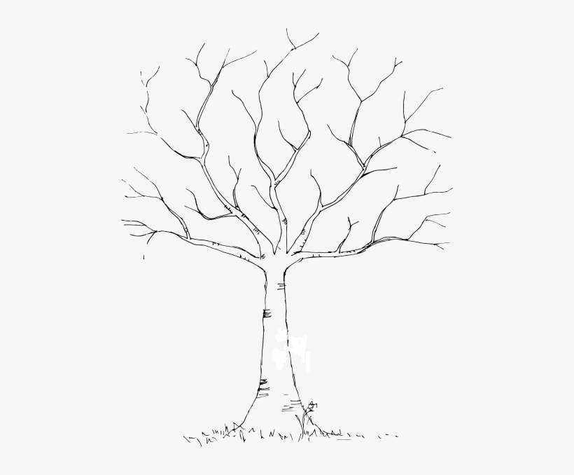 Blank Background Tree For Diy Fingerprint Trees Would Template Wedding