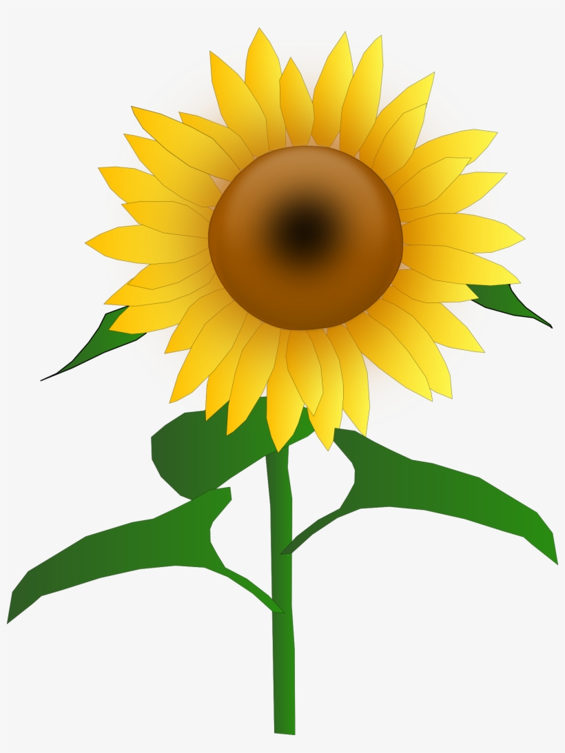 Sunflower Clipart Commercial Use - Sunflower Clipart Transparent ...