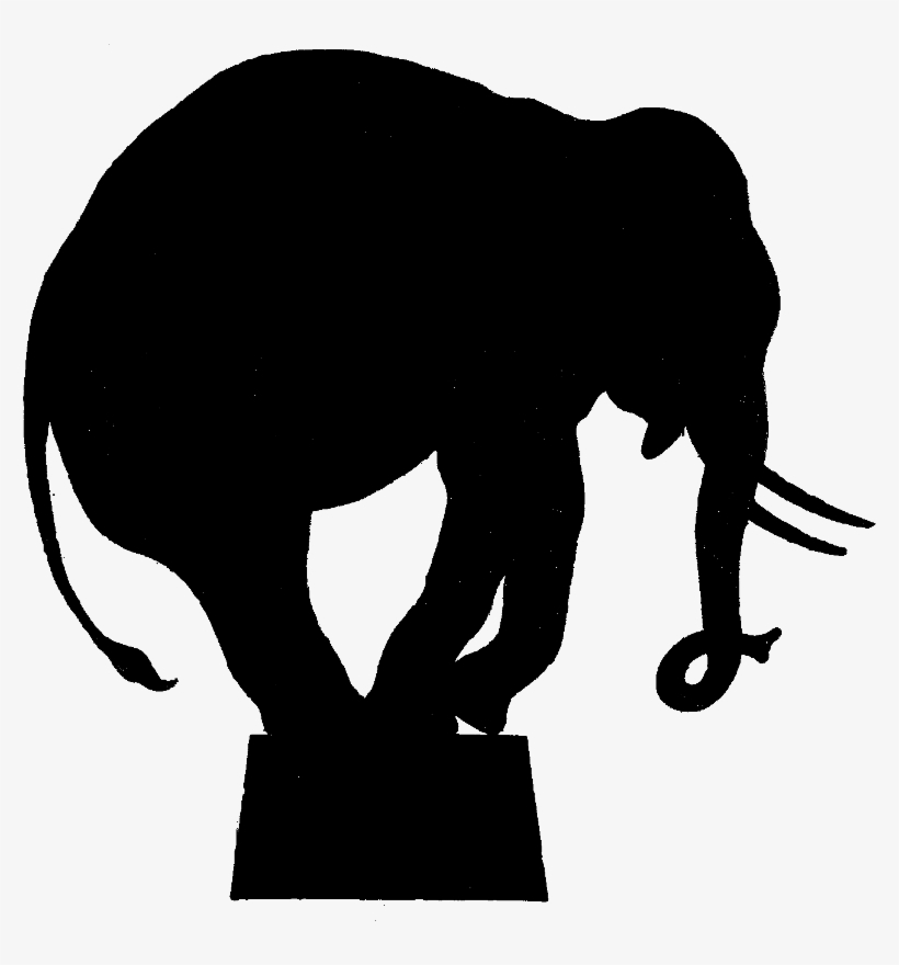 Circus Elephant Png Wwwimgkidcom The Image Kid Has Circus Silhouette Transparent Png 778x800 Free Download On Nicepng More than 12 million free png images available for download. circus elephant png wwwimgkidcom the