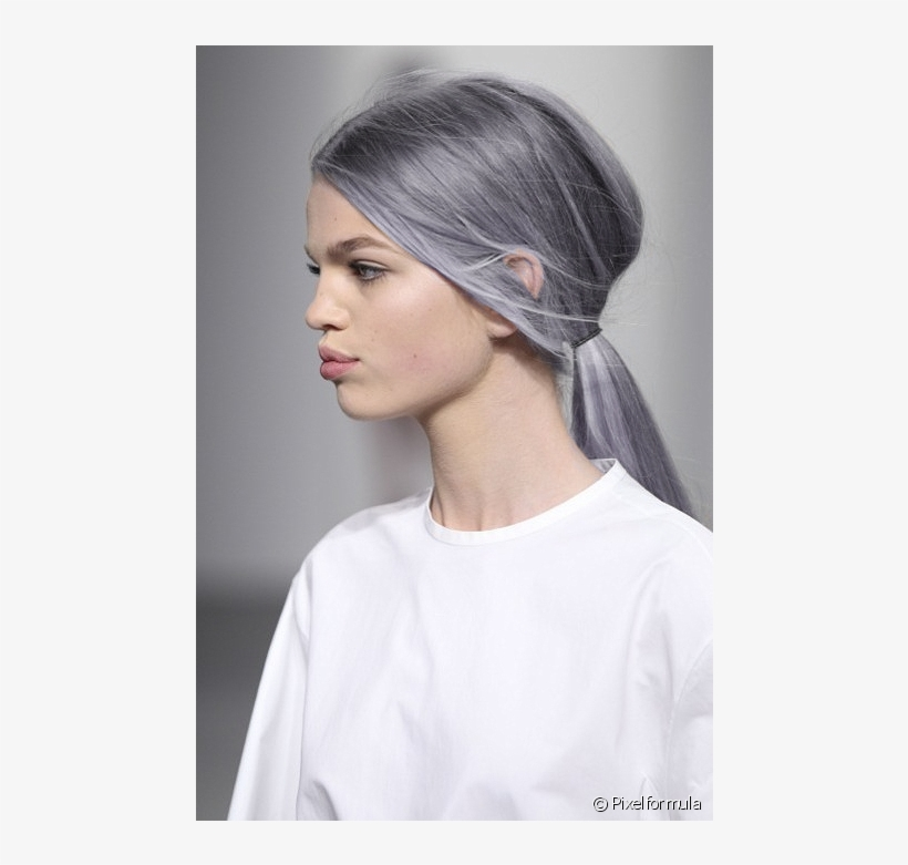 Ponyboy Silver Hair With Purple Undertone Transparent Png