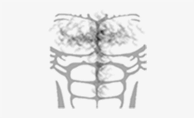Chest Hair Png T Shirt Roblox Musculos Transparent Png 420x420