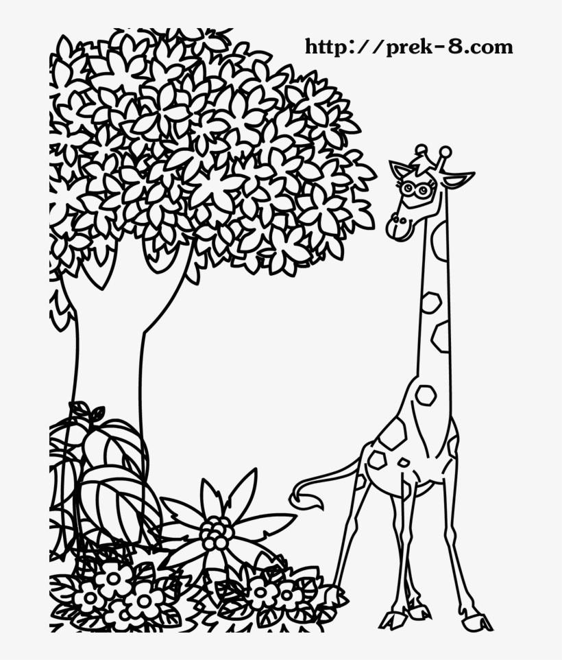 - Free Coloring Pages Of Jungle Trees - Jungle Animals Drawing Kids