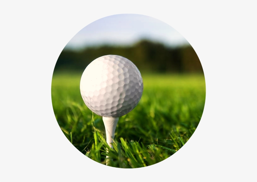 Golf Ball On Tee Png Png Free Download Practice Manual The Ultimate Guide For Golfers Transparent Png 500x500 Free Download On Nicepng