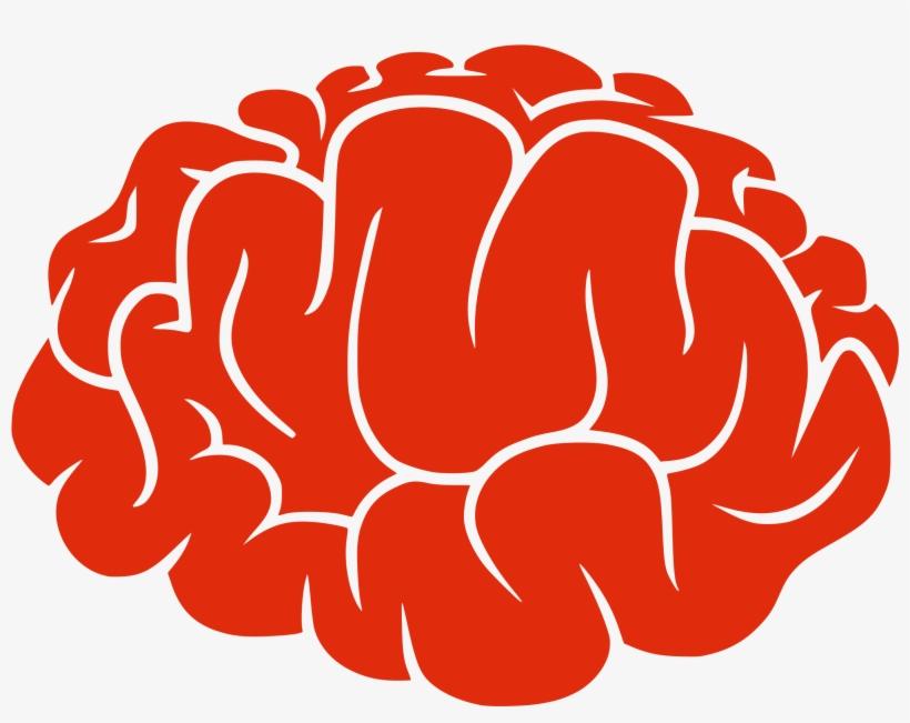 cartoon brain png image free download transparent background brain clipart transparent png 1024x1024 free download on nicepng cartoon brain png image free download