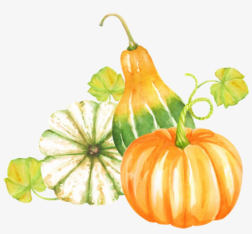 مكتبة صور PNG الغنية لتصميم المواقع 2-27848_all-clipart-watercolor-clipart-pumpkin-clipart-woodland-watercolor