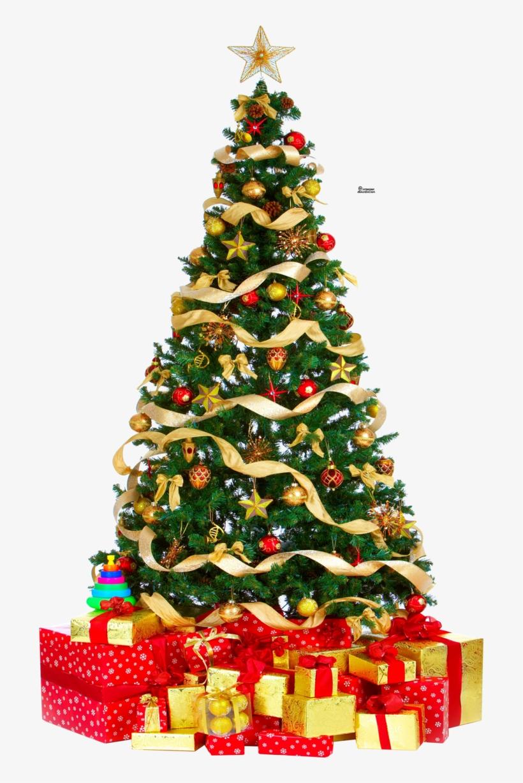 Download Hd Christmas Tree Png Pic Sapin De Noel Anglais