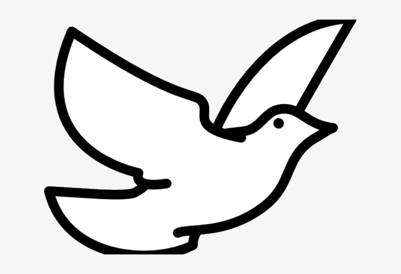 Bird dove. Clipart drawing flying transparent