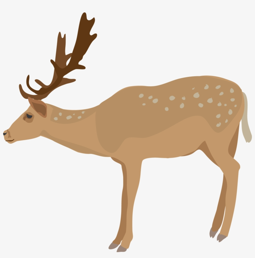 Deer transparent background. Free icons png clipart
