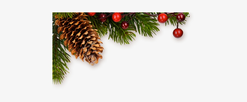 Png Christmas Decor Real Christmas Decor Png Transparent Png 480x260 Free Download On Nicepng