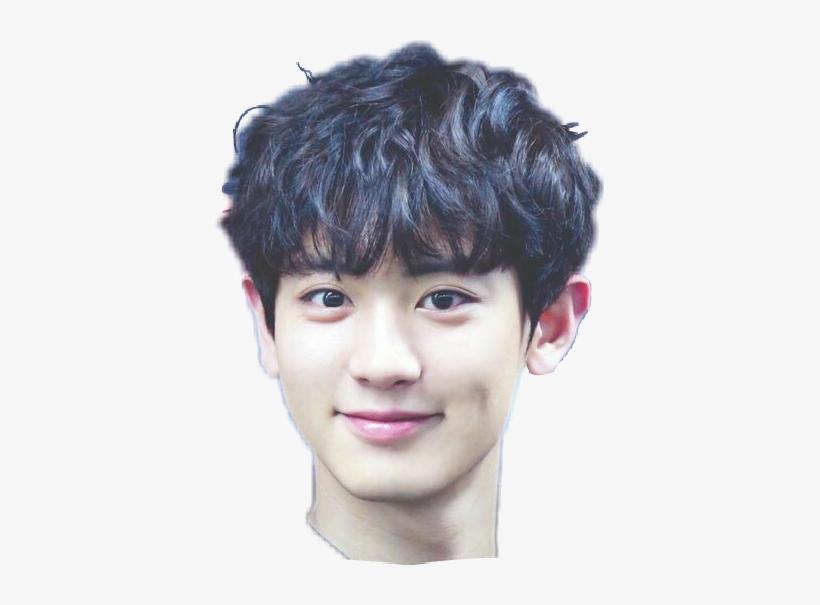 Park Chanyeol Cute Transparent Png 389x525 Free Download On Nicepng