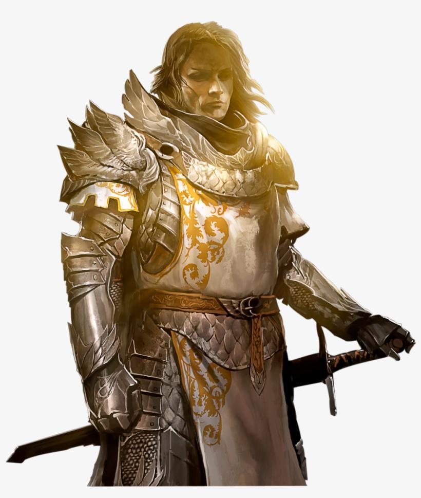 Png Image Warrior - Guild Wars 2 Meme Transparent PNG - 956x1084