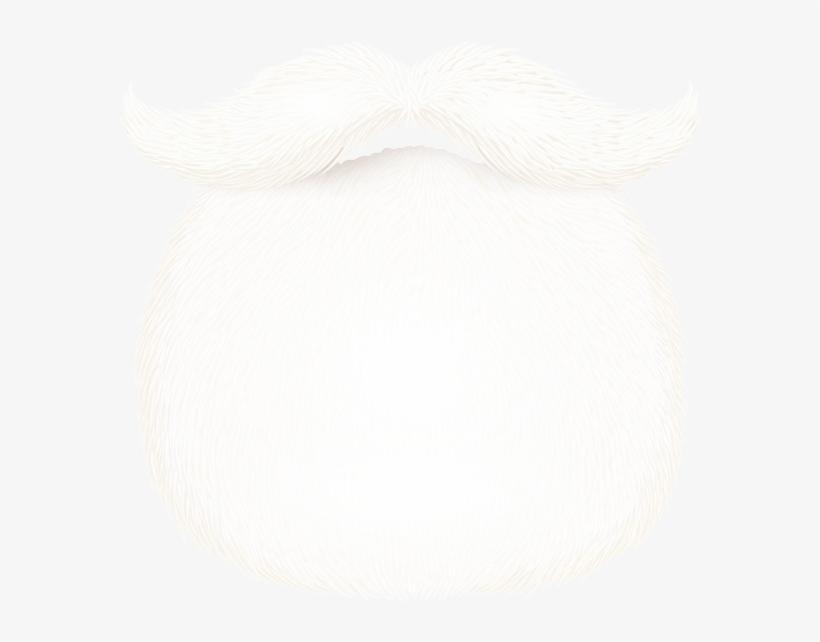 eb65718cc Santa Beard PNG & Download Transparent Santa Beard PNG Images for Free -  NicePNG