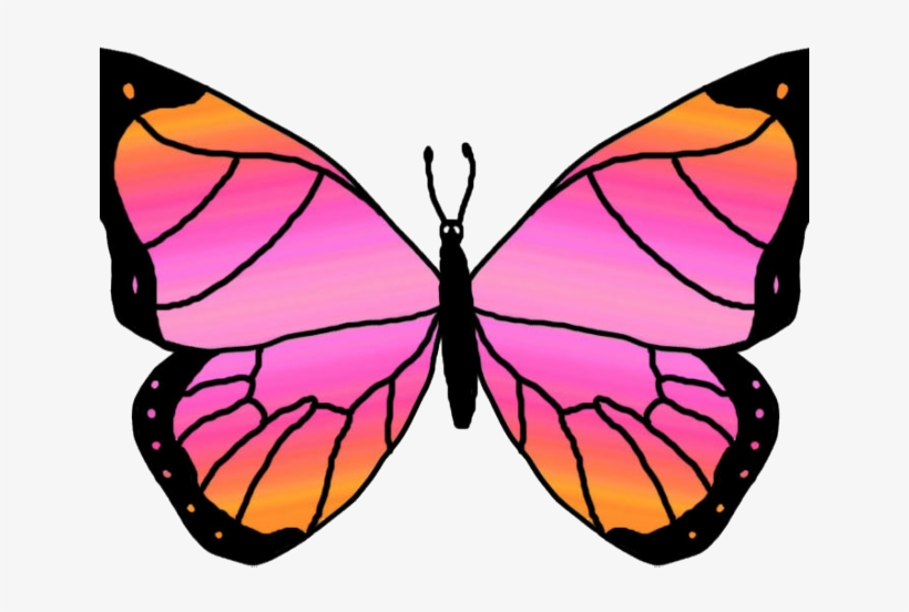 Monarch Butterfly Clipart Png Full Hd Butterfly Clip Art Free