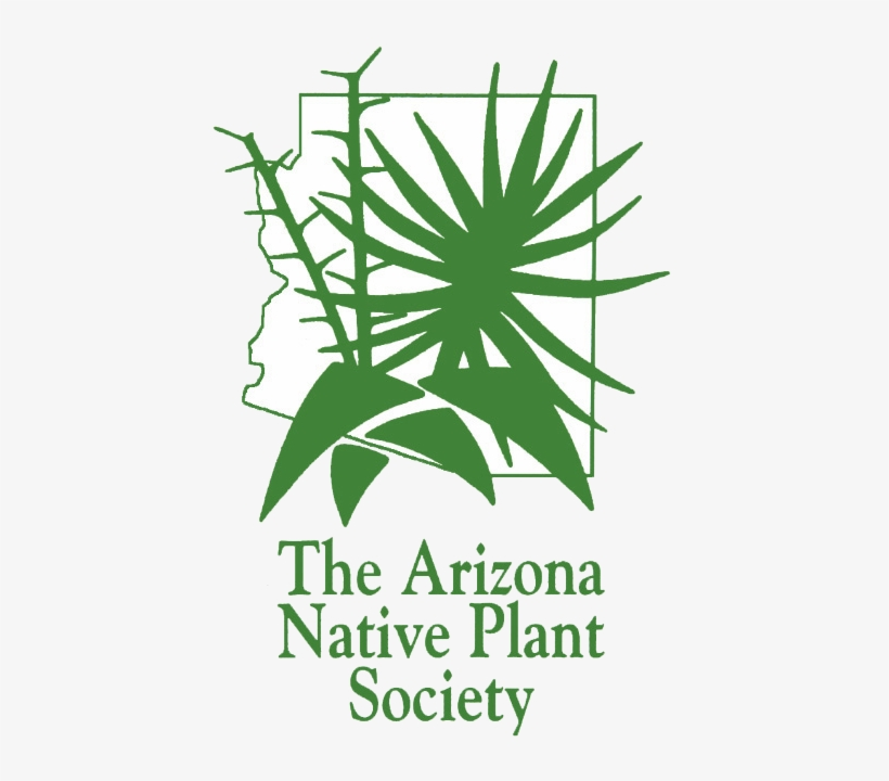 Aznps Logo White Background Arizona Native Plant Society
