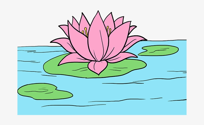How To Draw Lotus Flower Lotus Flower Drawing Transparent Png 680x678 Free Download On Nicepng