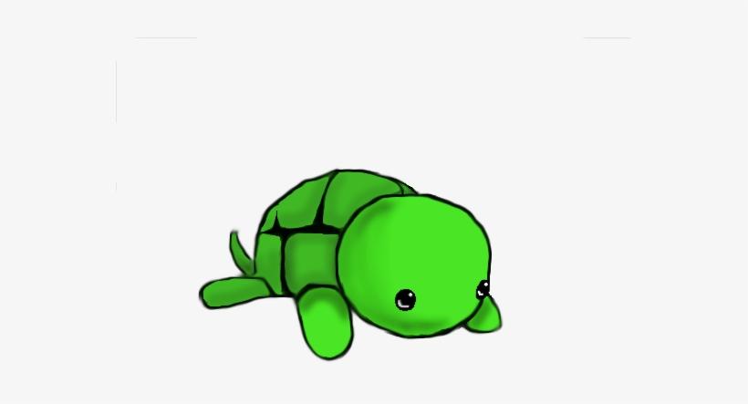 Cute Drawings Of Turtles Google Search Pinterest Cute Turtle