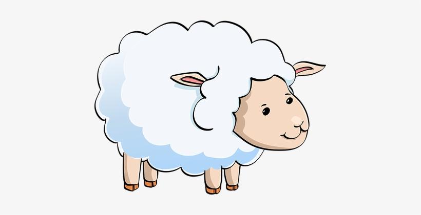 Lamb, Sheep, Cute, Animal, Funny - Male Sheep Cartoon Png