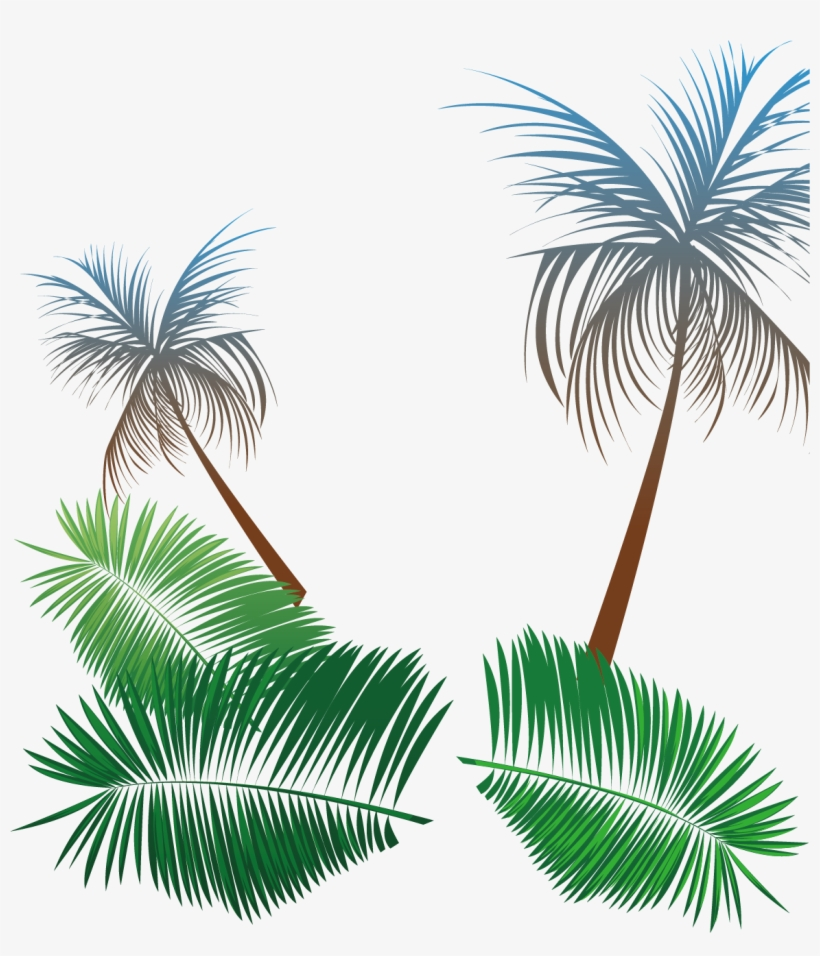 Svg Transparent Library Beach Coconut Tree Background