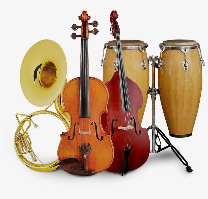 Best Musical Instrument Supplier In Philippines - Musicians